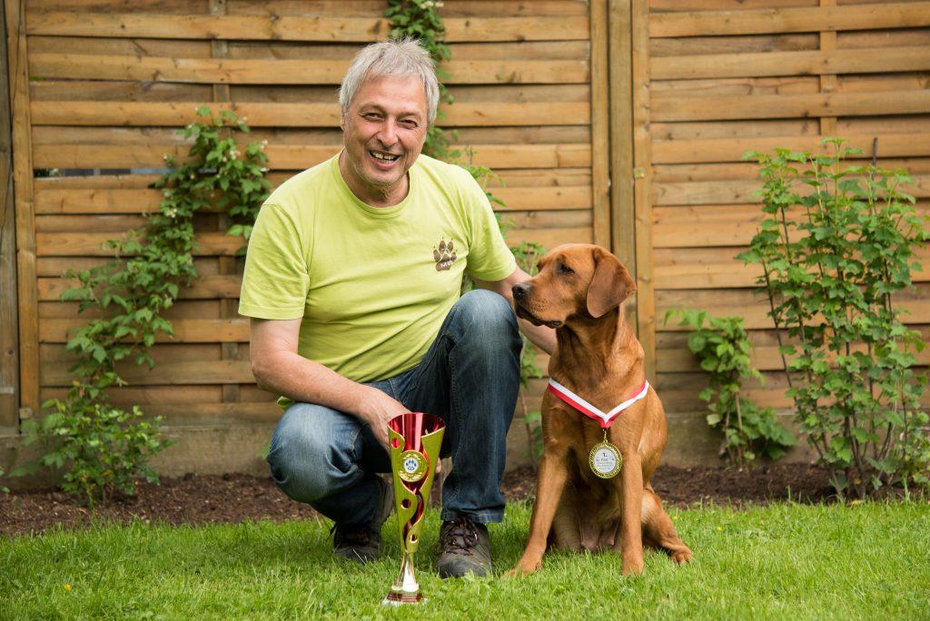 Labradorhündin Zuchthündin Foxred Auszeichnung
